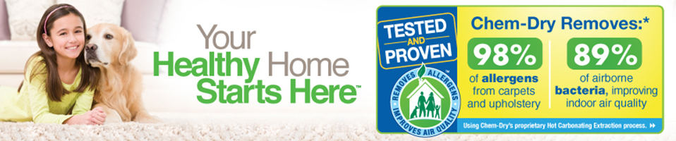 Healthy Home Starts Here with allergy icon
