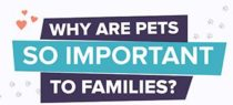 inf2016-09_why_pets_are_so_important_teaser