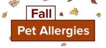inf2016-10_fall_pet_allergies_teaser